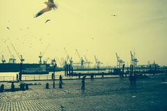 Special atmosphere on the fish market in hamburg with a view of the harbor royalty free stock photo