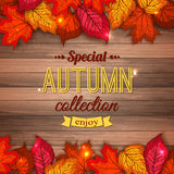 Special autumn collection typographical background. With shining foliage. Autumn sale, autumn leaves, autumn time. Photorealistic design for poster, placard Stock Illustration