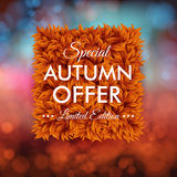 Special autumn offer advertisement poster. Blurred background wi Royalty Free Stock Images