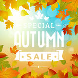 Special autumn sales business background. Layered Royalty Free Stock Photography
