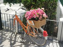Special bicycle with flowers. Bicycle with flowers stock images