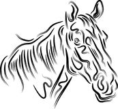 Special brush stroke horse head abstract. Horse head styled brush stroke drawing image with isolated white background Stock Photo