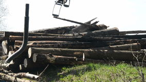 Special cargo truck with crane unload logs from truck. Forest fell. stock video