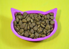 Special cat food on plate with cat head shape Royalty Free Stock Photography