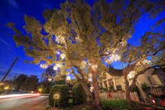 Special Chandelier Tree at Los Angeles Stock Photo