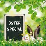Special d'Oster de hêtre d'oreilles de lièvres de tableau noir d'oeufs de pâques Image libre de droits