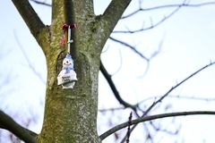Special Daddy Christmas decoration on a bare tree. Special Daddy snowman Christmas decoration hung in a bare tree outdoors against a clear winter sky Stock Image