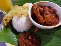 Special del pollo del lemak de Nasi imagenes de archivo