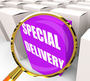 Special Delivery Packet Shows Secure and Important Shipping Royalty Free Stock Image