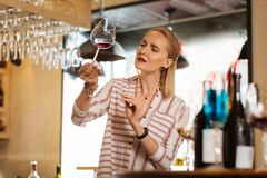 Nice smart woman looking at the glass with wine. Special drink. Nice smart woman looking at the glass of wine while working as a sommelier royalty free stock photography