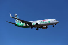 Special färgintrig Transavia 737 Arkivfoton