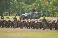 Special Forces (Kopassus) military from Indonesia Stock Photography