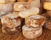 Special French cheese of Provence Stock Photography