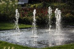 Special garden water effect Stock Images