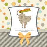 Special gift card with cat Stock Image