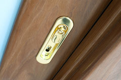 Special golden door handle Stock Images