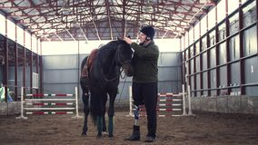 In special hangar, a disabled man jockey strokes a muzzle of a thoroughbred, black horse. man has prosthesis instead of
