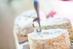 Special knife and fancy cheese appetiser as antre at party Royalty Free Stock Photo