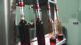 Bottling process of red wine. Special machine equipment bottling red wine while manufacturing. Bottling process of red wine stock video footage