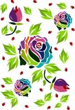 special multicolored roses Stock Image