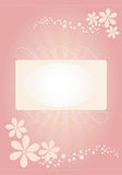 Special occasion card. Flower card for special occasions Stock Photos