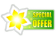 Special offer green label with spring flowers Stock Images