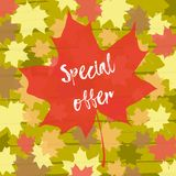 Special offer. Maple leaf on autumn background. Maple leaf with special offer on autumn background. Season autumn discount. Hand drawn inscription stock illustration