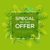 Special offer with leaves poster Royalty Free Stock Images