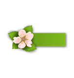Special Offer Sticker with Flower,  on White Background Stock Photography