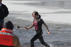 Special Olympics Nebraska Polar Plunge Miss Nebraska Contestant leaving the water. Dozens of brave people showed up Saturday, February 16 to raise funds for Royalty Free Stock Images
