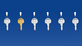 The special one. Six keys on blue background. One key is special one - golden key Stock Images