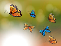 A special paper with orange and blue butterflies Stock Image