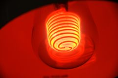 A special red light bulb Stock Image
