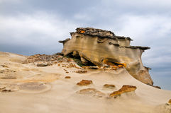 Special rocky coast Stock Image