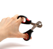 Special Scissors Stock Photos