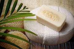 The special scrub soap on spa set for healthy skin Royalty Free Stock Images