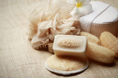 The special scrub soap on spa set for healthy skin Stock Images