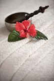 Special spa flower Royalty Free Stock Image
