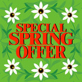 Special Spring Offer ,Beautiful colorful card Stock Photo