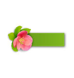 Special spring offer sticker with flower, isolated on white back Royalty Free Stock Image