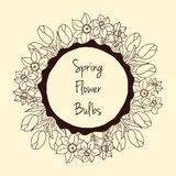 Special spring offer sticker with tulips and daffodil. Stock Photo