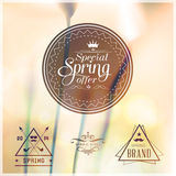 Special Spring Offer typographic design Royalty Free Stock Image