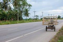 Special transport på vägen Arkivbilder