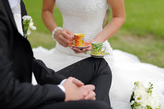 Special wedding toast Stock Images