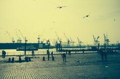 Speciale atmosfeer op de vissenmarkt in Hamburg met een mening van de haven stock fotografie