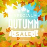 Speciale van de de bedrijfs herfstverkoop achtergrond Royalty-vrije Stock Fotografie
