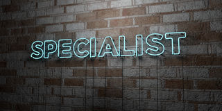 SPECIALIST - Glowing Neon Sign on stonework wall - 3D rendered royalty free stock illustration Royalty Free Stock Photography