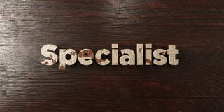 Specialist - grungy wooden headline on Maple  - 3D rendered royalty free stock image Royalty Free Stock Images