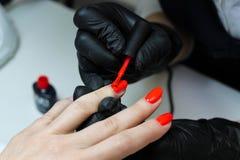 Specialista del manicure nelle cure nere dei guanti circa le unghie delle mani Il manicure dipinge le unghie con smalto rosso fotografia stock