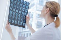 Specialista medico qualificato che analizza radiografia al laboratorio immagine stock libera da diritti